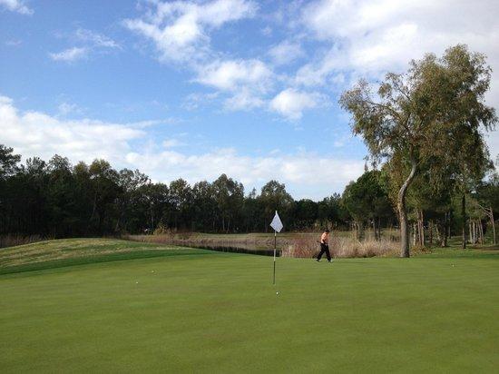 Sirene Belek Hotel: Golf