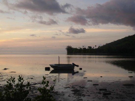 Moorea Surf Inn:                   The little boat