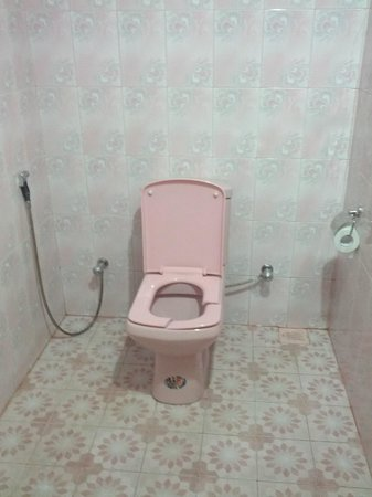 Millennium Resort & Gems:                                     Bathroom with broken toilet