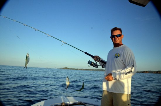 Sport Fish Panama Island Lodge:                                     Catching bait