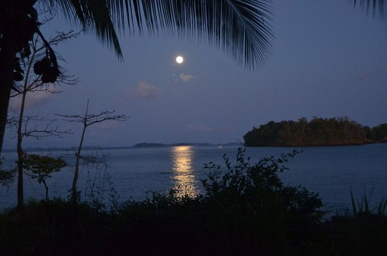 Sport Fish Panama Island Lodge:                                     Nature at its best