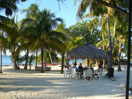 Lime Tree Bay Resort:                                     Beach area, tables, chairs, hammocks.