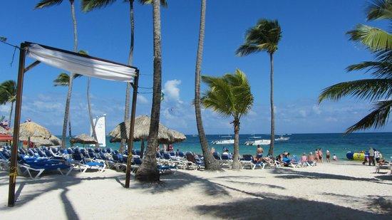 Dreams Palm Beach Punta Cana:                                     beach