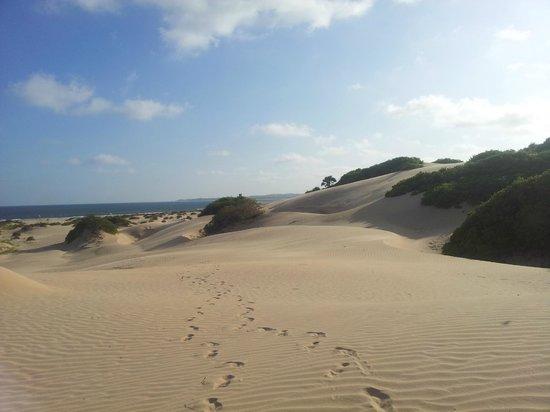Che Shale Beach: Che Shale, dune
