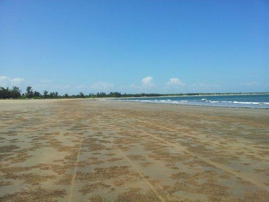 Che Shale Beach: Che Shale, spiaggia (granchi)