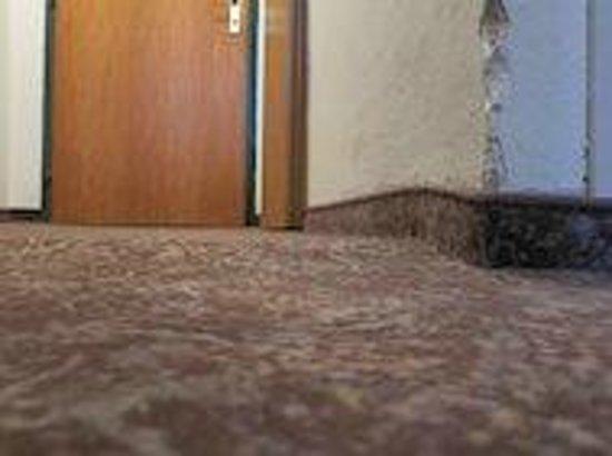 Alpenhotel Edelweiss:                   Der gepflegte Teppichboden, die Wände