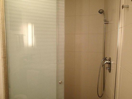Hotel Novotel Rio De Janeiro Santos Dumont:                   Standup Shower