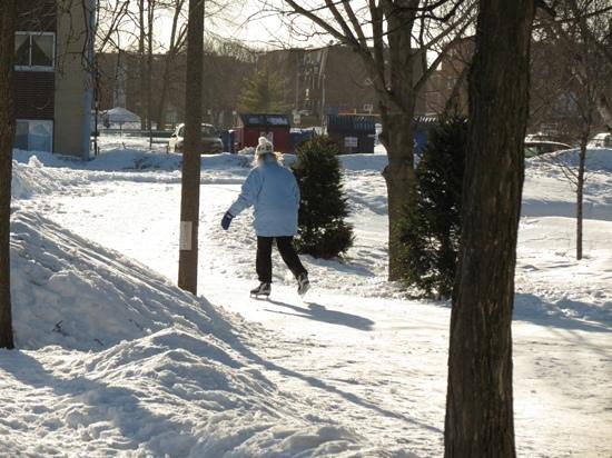 Parc Michel-Chartrand :                   beau sentier pour patinage