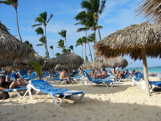VIK Hotel Arena Blanca:                   belle plage avec beaucoup de chaises et de palapas