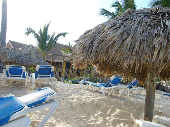 VIK Hotel Arena Blanca:                   plage
