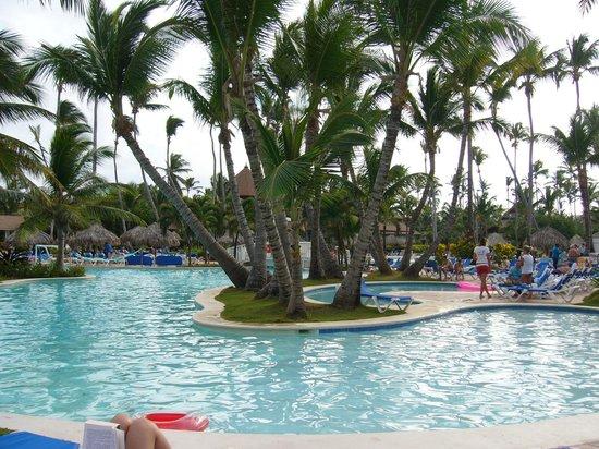 VIK Hotel Arena Blanca:                   plein de palmiers sur le site, très beau