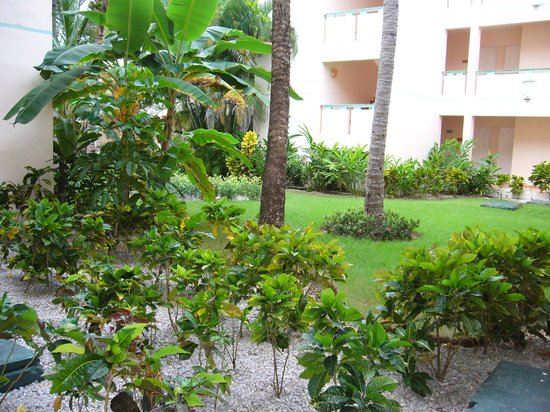 VIK Hotel Arena Blanca:                   les jardins, très propre