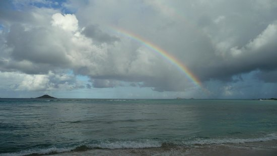 Mango Bay Resort:                   rainbow at paradise