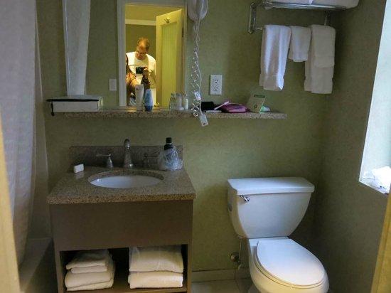 The Hotel at Times Square:                   banheiro espaçoso e sempre limpinho e cheiroso