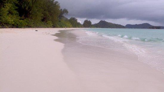 Acajou Beach Resort:                   Spiaggia ad agosto