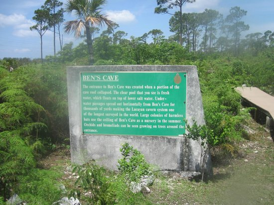 Lucayan National Park, Grand Bahama Island: Description of Ben's Cave
