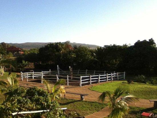Pikera Uri Eco Lodge :                   DESDE LA HABITACION
