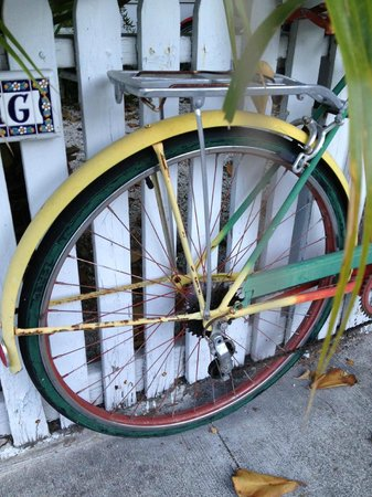 Alexander's Gay and Lesbian Guesthouse:                   Bikes abound - a KW staple