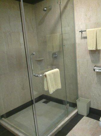 โรงแรมเอ็มเอสการ์เด้นกวานตัน: Shower