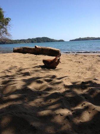 EcoHotel Boca Brava:                   Playa de Boca Brava