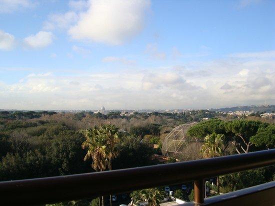 Parco dei Principi Grand Hotel & SPA:                   view