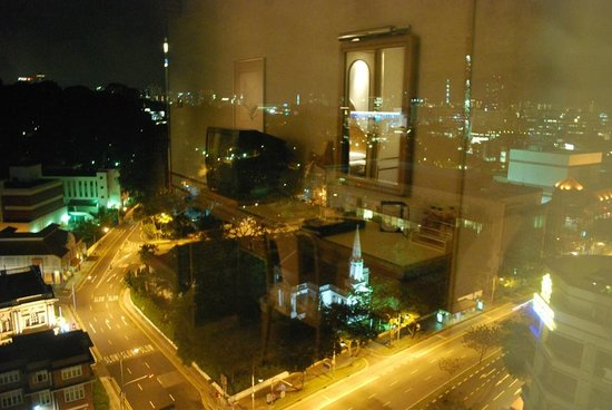 Peninsula Excelsior Hotel: The view