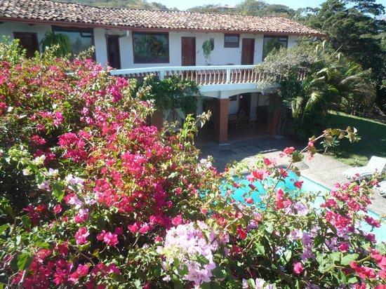 Hotel Posada Canal Grande:                   Las habitaciones se localizan alrededor del jardin y la piscina