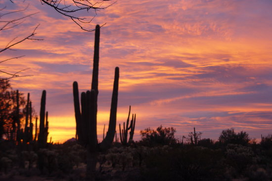 Hacienda Linda: Good morning Tucson!