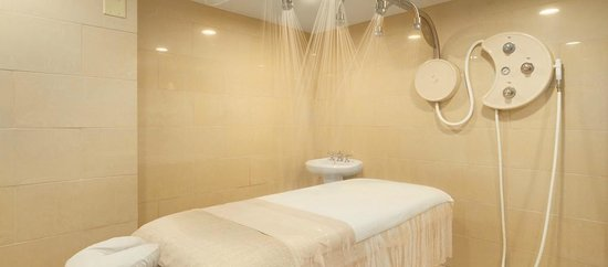 The Elms Hotel and Spa: Spa Vichy Shower