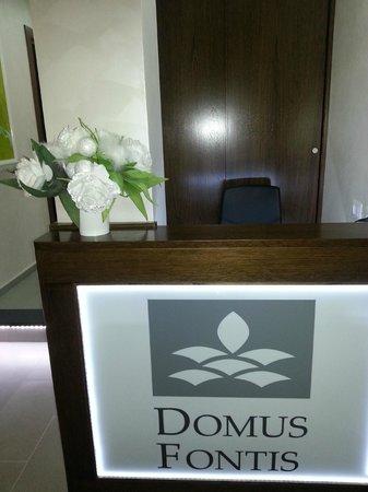 Domus Fontis :                   Reception