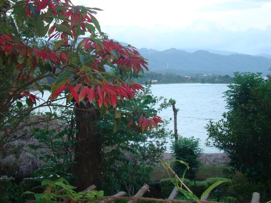 Oruthota Chalets:                   view from the grounds