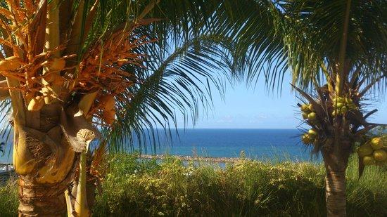 Venezuela Marriott Hotel Playa Grande:                   vista desde la piscina