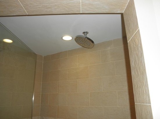 Pier House Resort & Spa : Good shower head