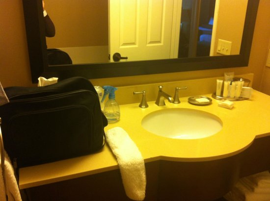 BEST WESTERN PLUS Stevenson Manor:                   Bathroom - very nice :-)