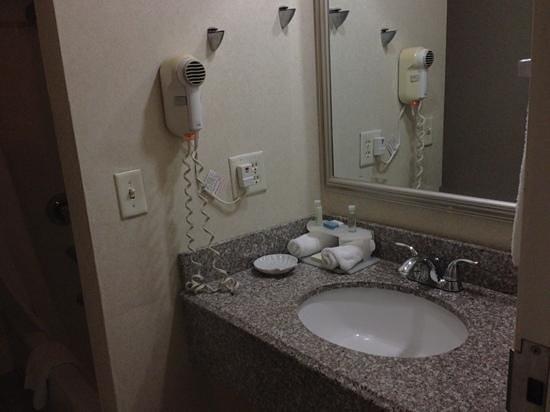 BEST WESTERN PLUS Galleria Inn & Suites:                   banheiro
