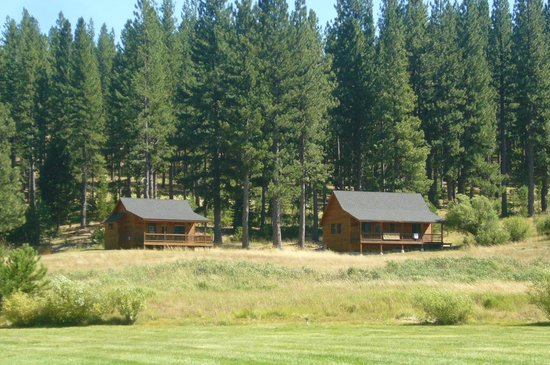 Lodge at Whitehawk: Private individual cabins amongst the pines