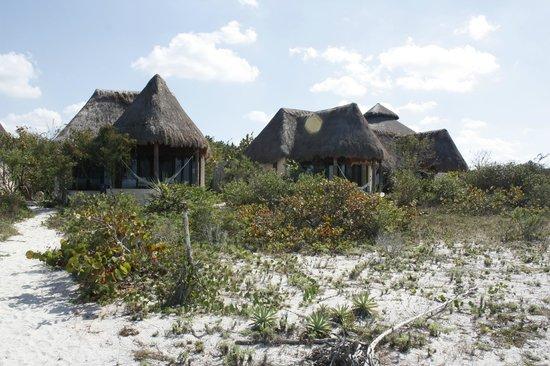 Hotel Xixim:                   camino de la playa a la habitación