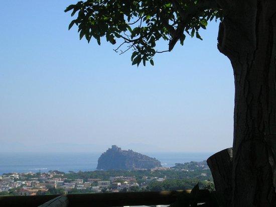 Hotel Villa Ireos:                   Vista sul castello aragonese da una delle stanze