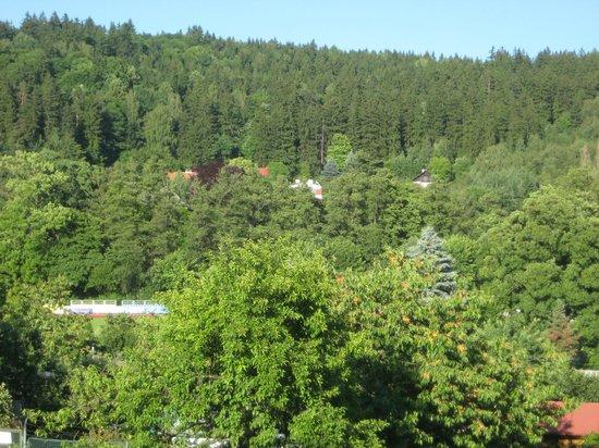 Villa Walir:                   вид из окна