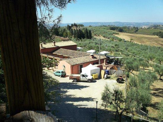 Agriturismo Montalbino:                                     Una parte delle strutture immerse nel verde