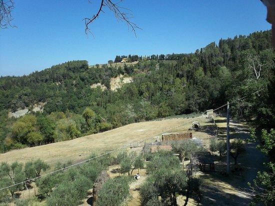 Agriturismo Montalbino:                                     La collina alle spalle