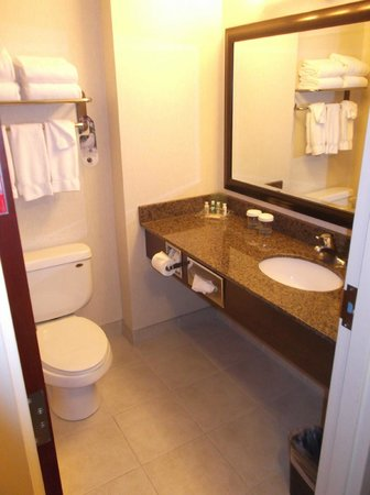 Holiday Inn Hotel & Suites West Edmonton : washroom