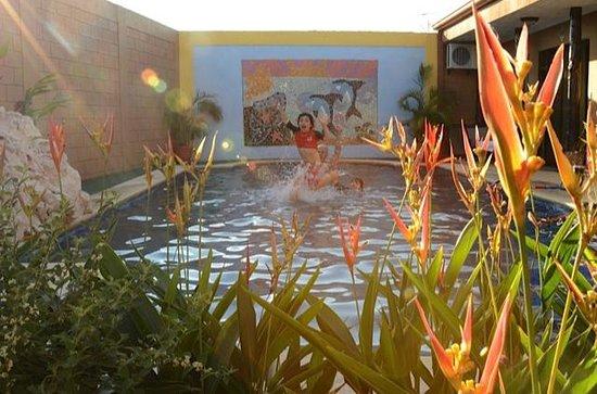 Casa Marin B&B :                   An Oasis so close to SanJose Airport