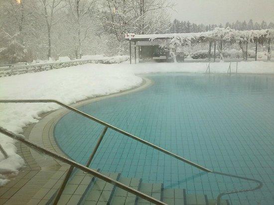 Hotel Balnea Superior:                   Scorcio piscina esterna