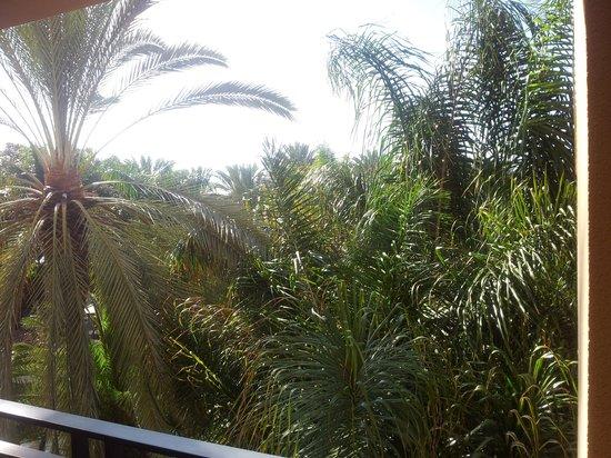 Lopesan Costa Meloneras Resort, Spa & Casino:                   Habitación Superior con Vistas a la palmera