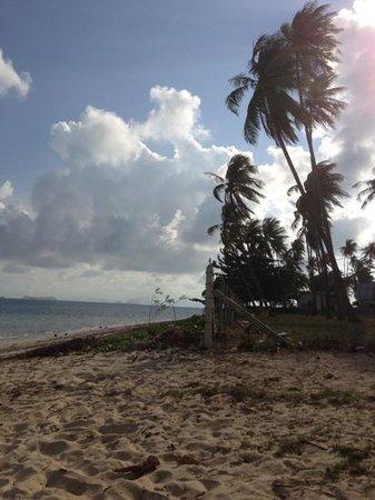 Jinta Beach Bungalow:                   La spiaggia..