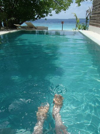 Dusit Thani Maldives:                   view from pool