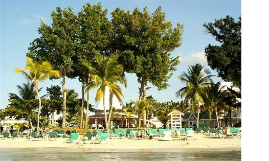Hotel Riu Palace Tropical Bay:                   beautiful grounds