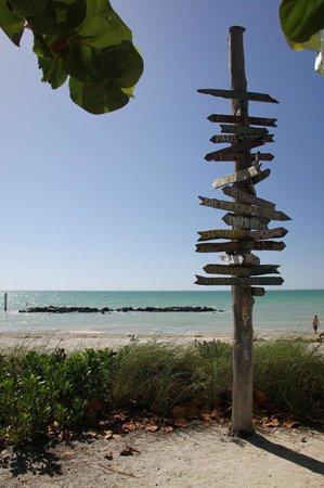 Caribbean House: spiaggia