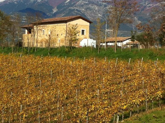 Alvito, Włochy:                   Cantina Cominium